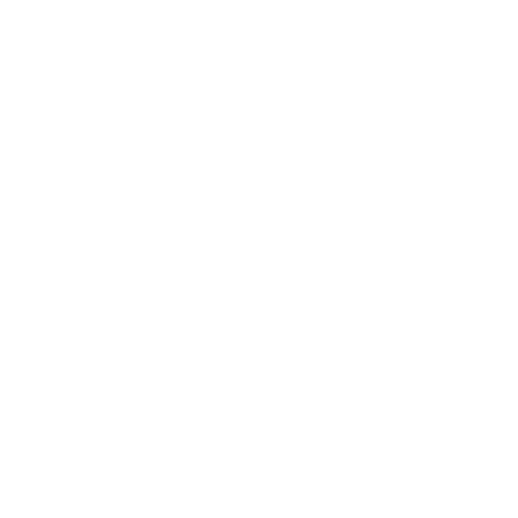 VICENSVIVES